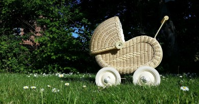 baby-carriage-798775_1280