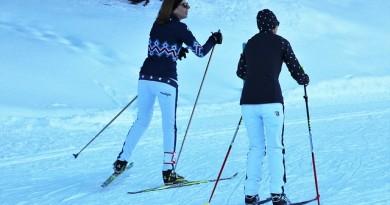 nosiče lyží a snowboardů